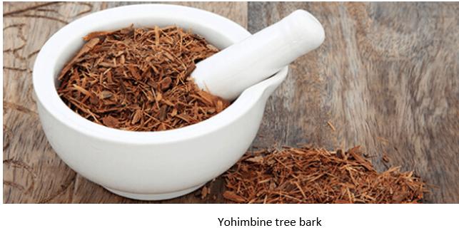 Yohimbine Tree Bark