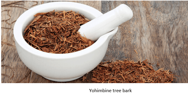 Yohimbine Tree Bark